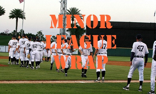 Post image for Tigers Minor League Wrap 6.1.2010