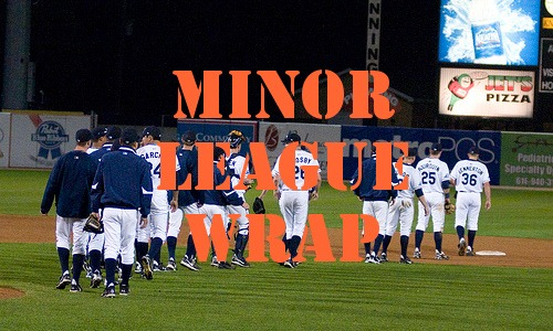 Post image for Tigers Minor League Wrap 6.9.2010